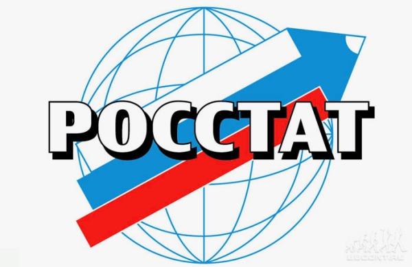 Регистрация и отчетность ИП в Росстат
