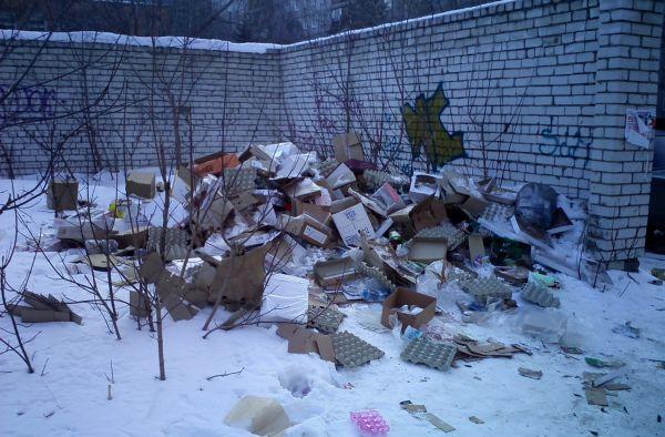 Размеры штрафа за выброс мусора в неположенном месте