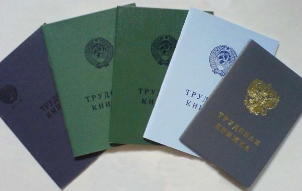 Варианты изготовления копий Трудовой