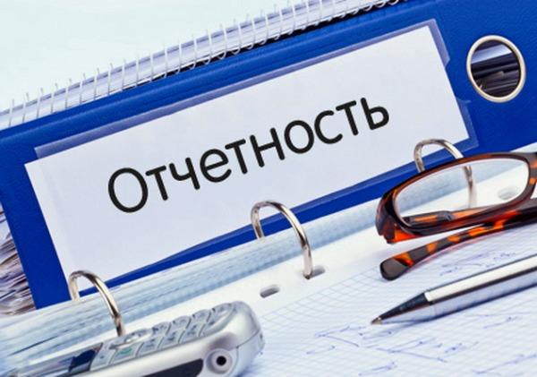 отчетность ИП в Росстат